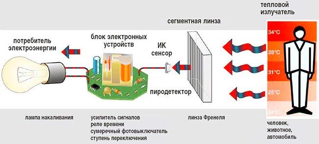 princip-raboty-detektora-dvizheniya